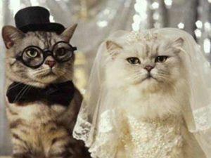 scherzi agli sposi